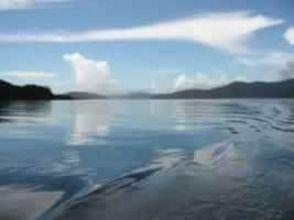【奄美・加計呂麻島】シュノーケル・シーカヤック・SUPを好きなだけ!半日ツアー(ティータイム付き)の画像