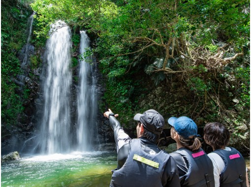 [Okinawa Yanbaru] Yanbaru clear stream river trekking tour ★ Family trekking for small children with peace of mind! (With photo and movie shooting service)の紹介画像