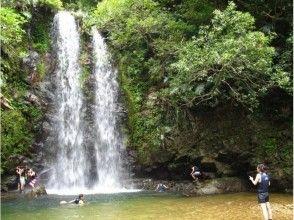 [Okinawa Yanbaru] Yanbaru clear stream River trekking tour (★ There various discount ★)