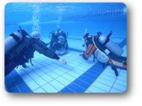 【新潟 柏崎】本格的に始める前にちょっと試してみたい プールで体験ダイビングの画像