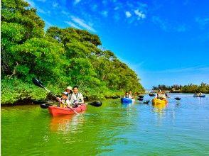 [Okinawa 100m River] Mangrove Kayak tour ★ Adventure Kayak trip to the subtropical mangrove river and sea ♪ (with photo and movie shooting service)