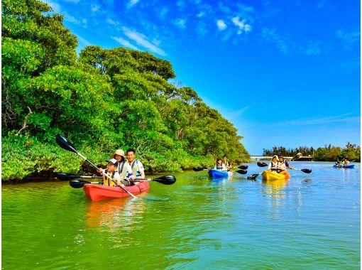 [Okinawa 100m River] Mangrove Kayak tour ★ Adventure Kayak trip to the subtropical mangrove river and sea ♪ (with photo and movie shooting service)の紹介画像