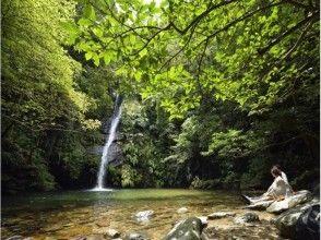 [Okinawa Yanbaru] subtropical jungle river trekking (★ There various discount ★)
