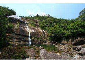 【鹿児島・屋久島】トレッキング蛇之口滝コースの画像