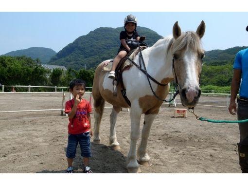 【静岡・南伊豆】初めての乗馬でも安心!引き馬コース