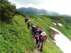【北海道・トレッキング】大雪山黒岳、ニセコアンヌプリ、樽前山、藻岩山などから選択できる!の画像