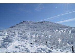 【長野・八ヶ岳】縞枯山・茶臼山 雪山登山の画像