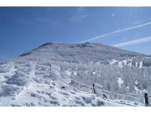 【長野・八ヶ岳】初心者にやさしい雪山「縞枯山・茶臼山」登山~ロープウェイ利用、送迎あり。15才~OK