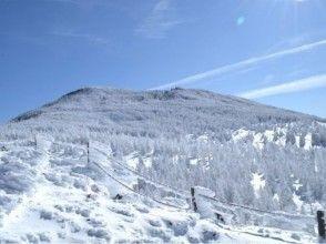 【長野・八ヶ岳】縞枯山・茶臼山 スノーシューの画像