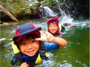 【沖縄本島・北部】ジュラシックワールドの世界、やんばるの森、リバートレッキングの画像