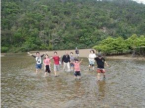 【沖縄・名護】満喫!満足!マングローブ林探検学習コース【カヤック・トレッキング】