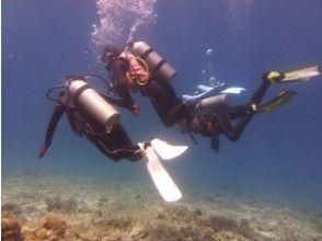 【沖縄・慶良間(ケラマ)諸島・座間味島】ケラマブルーの海で体験ダイビング【ボート・体験ダイビング】