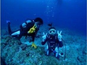 【沖縄県・宮古島】専属ガイドが1グループ毎にご案内!宮古島でおすすめのボート体験ダイビング 写真付き