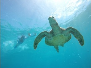 [Okinawa / Miyakojima] Infection control! Plan with snorkeling mask (optional) Sea turtle & coral reef snorkeling photo tour