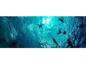 【京都府・宇治市】海の世界をもっと知ろう【アドバンスドオープンウォーターダイバーコース2日間】