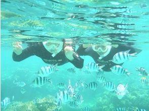 [沖繩和北方地區/名護/總部/瀨底島飛板的經驗和帆傘運動和令人興奮的潛水圖像