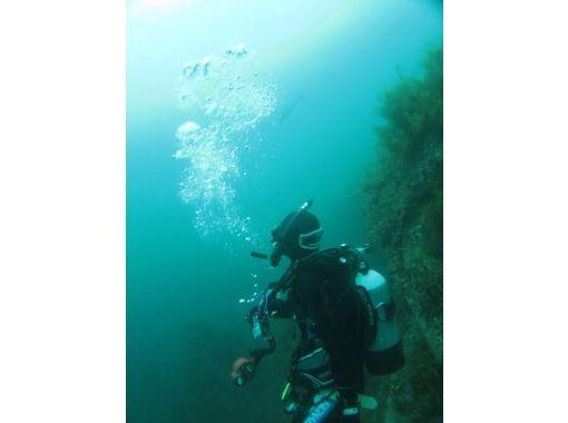 小木ダイビングセンター(Ogi Diving Center)