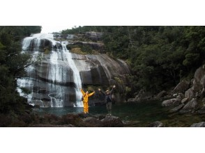 [Kagoshima Yakushima] trekking course up to a maximum of waterfall Yakushima
