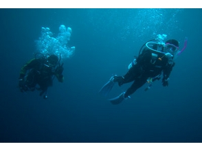 [Tokyo Aoyama] recommended to the first one! Discover Scuba Diving (pool and ocean)