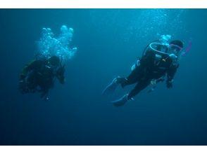 【埼玉・草加】初めての方にオススメ!体験ダイビング(プール・海洋)の画像