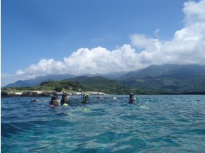 [Kagoshima Yakushima] Yakushima, want to taste the views of the non-mountain. Snorkeling Recommended for natural play (1-day course)