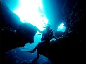 海不夜城[富山滑川] 24小時!粉絲潛水的形象,時間可以在富山灣選擇