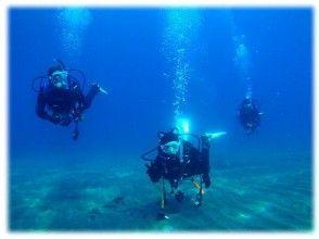 【静岡・熱海】プチリゾートアイランド初島の海を満喫しよう!【初島・ファンダイブ・2ビーチ】(日本語)の画像