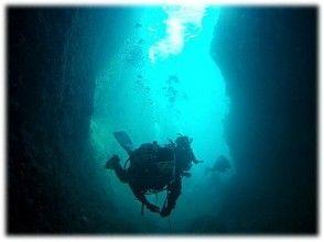 【静岡・熱海】神秘的な海底洞窟を探検!【熱海・ファンダイブ・2ボート】(日本語)の画像