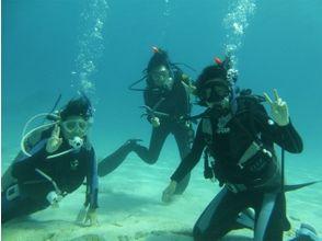 【沖縄・阿嘉島】ライセンス不要!初めての人でも楽しく潜れる♪体験ダイビングの画像
