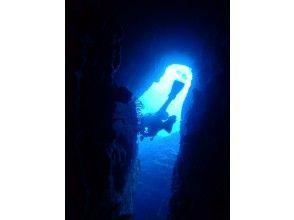 [Okinawa Nago departure] Busena de boat fan diving image of (2 dives)