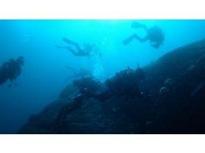 【愛知・刈谷】ライセンス無しでも海中世界を楽しめる!!体験ダイビング【未経験者・初心者歓迎】の画像