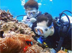 石垣島のキレイな海で【ダイビング体験】! 限られた旅の時間の有効活用、半日体験ダイビングコース!!の画像