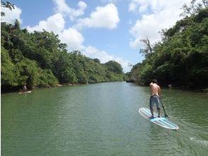 【沖縄・本島】冒険家気分で穴場スポットを探検!SUP体験(120分マングローブリバークルーズ)の画像