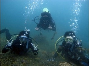 [Beginner welcome] very popular with children! The Omijima Blue diving large enjoy and experience [2 hour course]