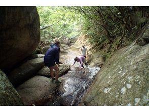 【沖縄・石垣島】水と触れ合う気持ちよさを堪能!渓流登り&滝壺ダイブツアー(キャニオニング)の画像