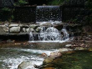 【埼玉・秩父】豊かな自然に囲まれて ニジマス1日釣り放題コース【BBQオプションあり♪】の画像