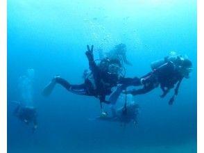 【静岡・伊豆】リフレッシュダイビング(日帰り海コース・半日プールコース)