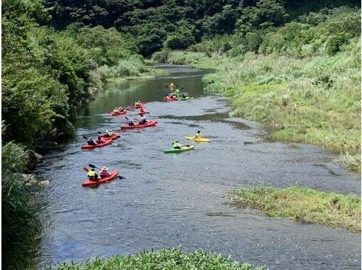 【鹿兒島/奄美大島】漂流和紅樹林原始森林之旅の紹介画像