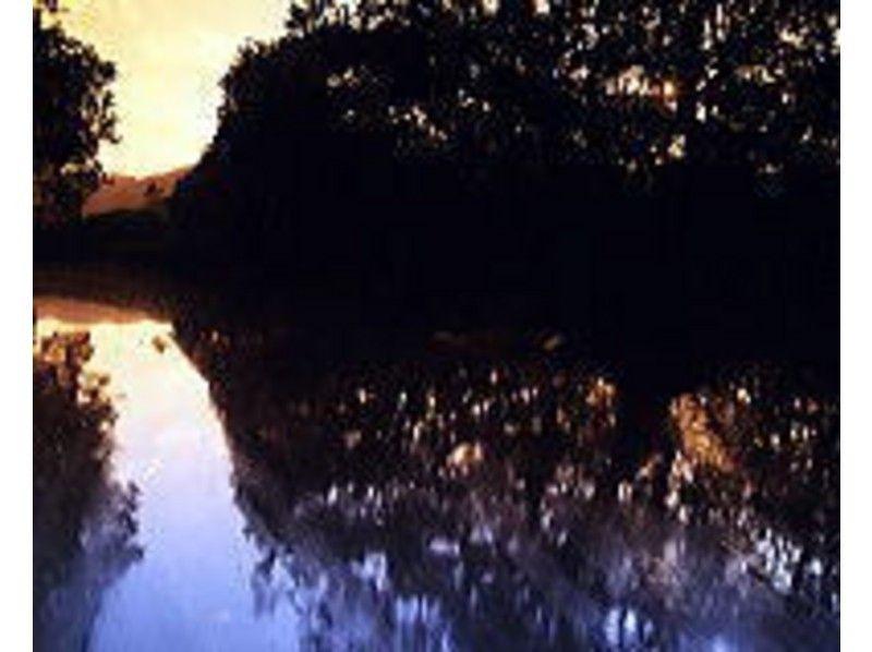 [鹿儿岛·奄美大岛】享受神秘的空间!夜间独木舟之旅の紹介画像