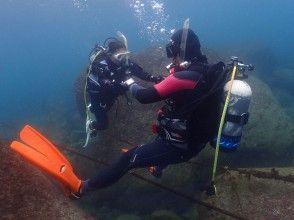 【神奈川/湘南】通年楽しめる!海の世界をのぞいてみよう!体験ダイビング