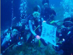 [名古屋] PADI电子学习开放水域潜水员[执照取得]海豚课程