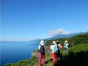 【北海道・知床】断崖と海を眺める「知床の森ウォーク」(地域共通クーポンOK※現地払いのみ)