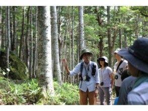 【北海道・知床】夏プログラム一番人気!知床五湖ガイドツアー ~世界自然遺産・知床の森を散策~(地域共通クーポンOK※現地払いのみ)