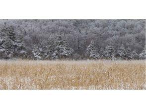 【青森・八甲田山】トレッキング(初冬の山をあるくルート)の画像