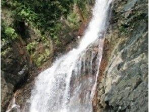 【沖縄/やんばる】比地大滝渓流トレッキング – 沖縄本島で最大の比地大滝を目指す渓流ツアーの画像