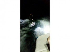 【滋賀・琵琶湖】LED照明の中を楽しむ!ナイトサーフィン体験プランの画像