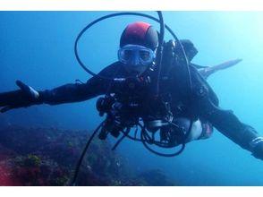 [Shizuoka Higashiizu] PADI Open Water Diver course