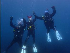 [Shizuoka Higashiizu] PADI Scuba Diver course
