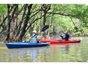 【沖縄・石垣島】マングローブ林 カヌー体験ツアー ★のんびり体験コース/3時間★の画像