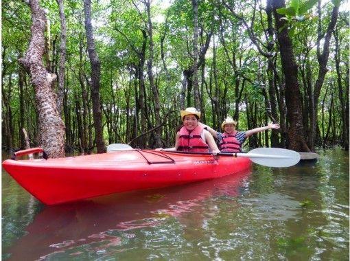 【沖縄・石垣島】マングローブ林 カヌー体験ツアー ★のんびり体験コース/3時間★